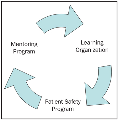 Figure 4. Sustainability through Mentoring