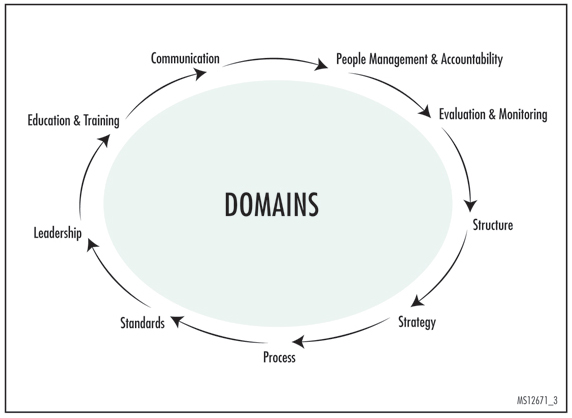 Figure 3. Domains as a Framework for Assessing Achievement