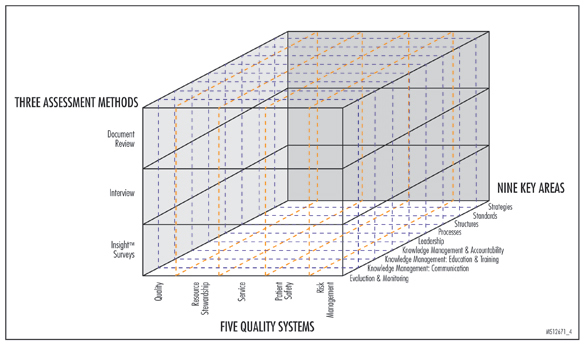Figure 4. Framework for Kaiser Permanente's Quality Systems Assessment